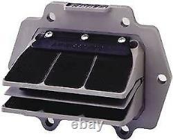 Remplacement Pour Delta Reed Petals 2 Reed Valve Moto Tassinari 2p050-1